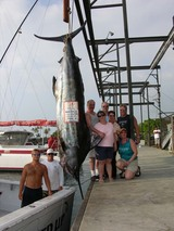 Profile Photos of Hooked Up Sportfishing