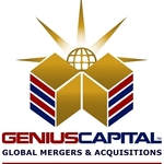 GLOBAL MERGERS & ACQUISITIONS GROUP LLC