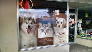 Wags & Whiskers Pet Food, Supplies, and Grooming