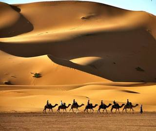 Morocco Desert Tours, Morocco Guided Tours, Morocco Camel Trekking