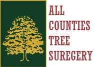 All Counties Tree Surgery