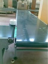 Horizontal Belt conveyors Neo Conveyors G-414,UPSIDC PHASE-II,M.G Road Industrials Area