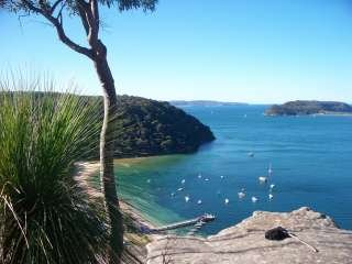 Flamin' Galah Sydney Tours and Airport Transfers