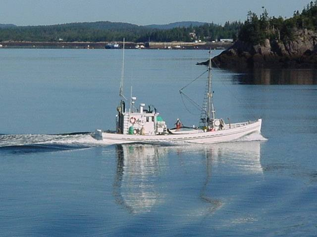 One of the historic Connor's Sardine carriers heading into port. Profile Photos of Harbour Tide Inn ~ Bed & Breakfast 725 Main Street - Photo 64 of 83