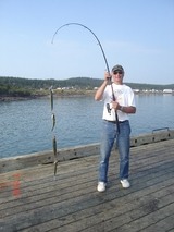 You can catch one on every hook you cast out.                          Harbour Tide Inn ~ Bed & Breakfast 725 Main Street