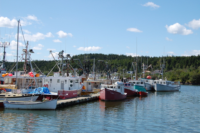 The fishing fleet is in. Blacks Harbour and Our Coastal Views of Harbour Tide Inn ~ Bed & Breakfast 725 Main Street - Photo 45 of 48