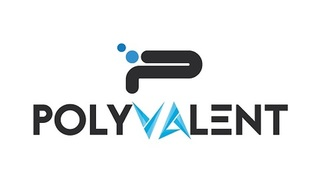 Digital and Email Marketing Company|Polyvalent Digital