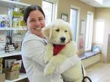 Fairmont Animal Hospital  of Fairmont Animal Hospital