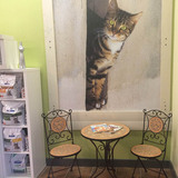 Sit and read a magazine with coffee while your cat is in it's appointment or chat with our veterinarian.