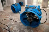 Water Damage Specialists, Ft Lauderdale