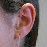 Profile Photos of Museum Of Living Arts Body Piercing