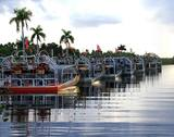 Profile Photos of Everglades Holiday Park - Airboat Tours & Rides