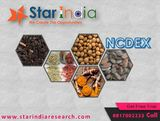 New Album of Star India Market Research