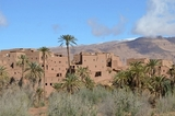 Profile Photos of Morocco Private Tours - Dunes Line Tours