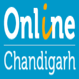 SEO Company and SEO Services in Chandigarh