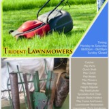 Trident Lawnmowers | Sprockets and chain in Perth