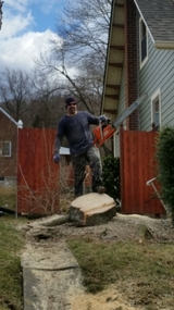 Profile Photos of ECO Tree and Lawn Service