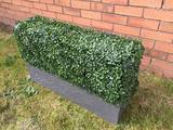 Hedged In Ltd, Stockport