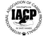 Profile Photos of Canine Dimensions Home Dog Training