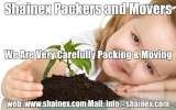 Shainex Packing and Moving Company, Shainex Packers and Movers | Packing & Moving | Movers Packers | Relocation Company In India, Dwarka, New Delhi