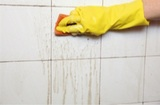 Profile Photos of Little Rock Janitorial