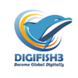 Digital Marketing Agency & Online Marketing Company India | Digifish3