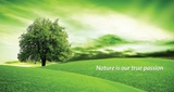 Live the Nature DMCC
