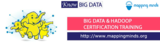Profile Photos of Mapping Minds - Hadoop Big Data Certification and training Institute