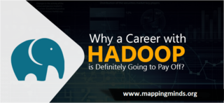 Mapping Minds - Hadoop Big Data Certification and training Institute