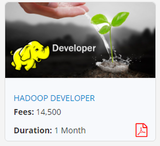Pricelists of Mapping Minds - Hadoop Big Data Certification and training Institute
