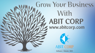 ABIT CORP-Software development and SEO company in Indore