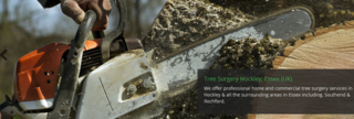 Kings Tree Services