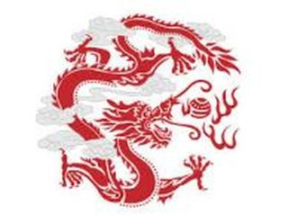 Red Dragon Acupuncture & Wellness Center
