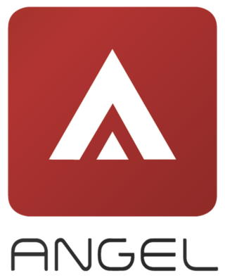 Angel Real Estate Consultancy Co. Ltd.