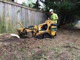 Profile Photos of Schnell Tree Service LLC