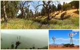 New Album of Pindan Tours and 4WD Training