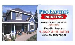 Pro Experts Painting
