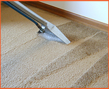 Profile Photos of Carpet Cleaners Christchurch