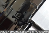 voice singing lessons in park slope