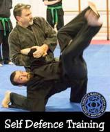 Profile Photos of Guests Martial Arts