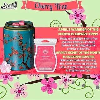 cindy's awesome scentsations