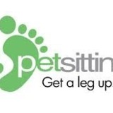 Petsitter-The Best Pet Sitting Services