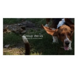 Waddles & Wags Pet Services