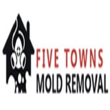 five towns mold removal, Woodmere
