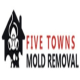 five towns mold removal