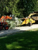 Tom's Tree Care 58951 Van Dyke Rd