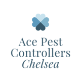 Ace Pest Controllers Chelsea
