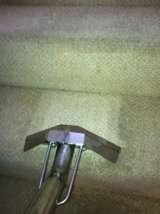 CARPET CLEANER PORTISHEAD AND BRISTOL Carpet Cleaning Bristol - KSW - Cleaning Services 24 Mendip Rd