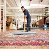 SG Carpet Cleaning Specialists