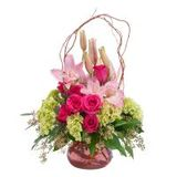 The Blossom Shoppe Florist & Gifts of The Blossom Shoppe Florist & Gifts
